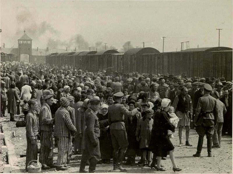 Selekce v koncentračním táboře v Osvětimi.