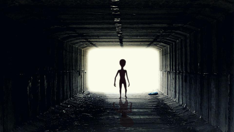 Představy o tom, jak by mimozemšťané mohli vypadat, se různí.