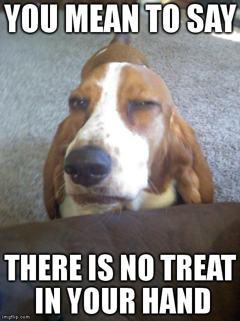 no treat