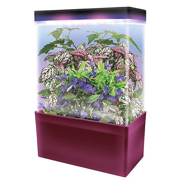 1737_led_lightcubes_terrarium_tropical_jungle