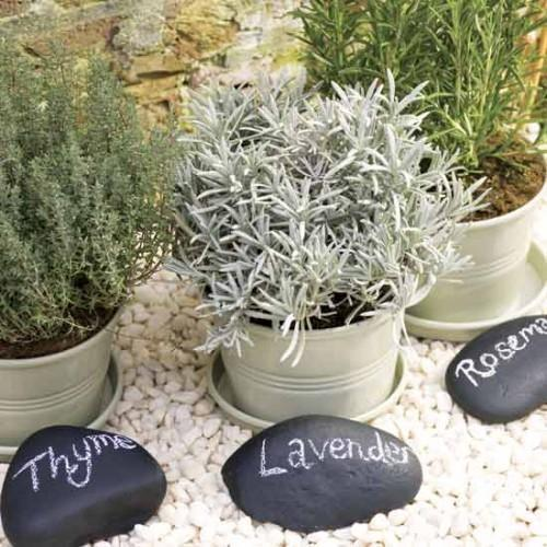 easy-to-make-stylish-herb-garden