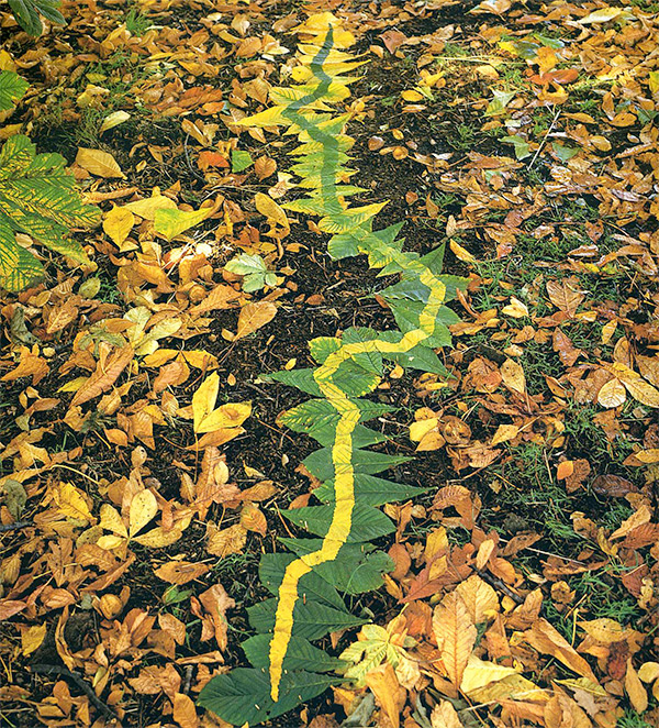 PP-Andy-Goldsworthy-Earth-Art-2