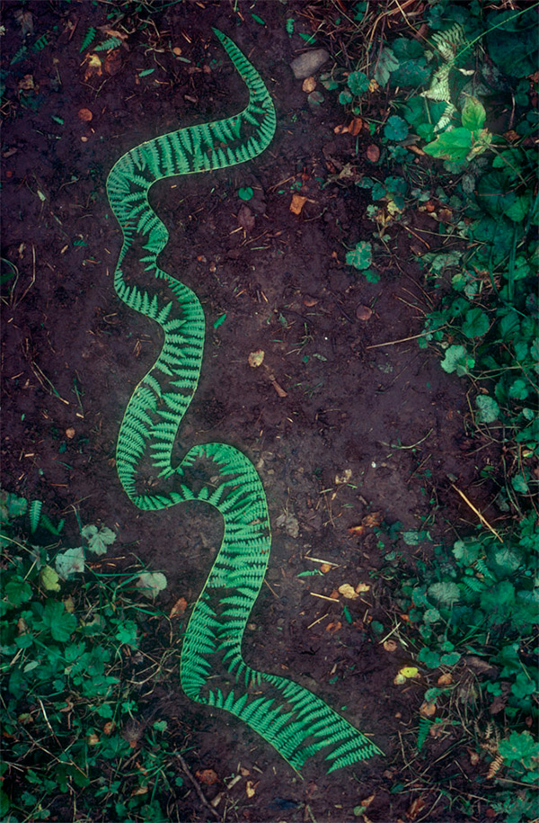 PP-Andy-Goldsworthy-Earth-Art-9