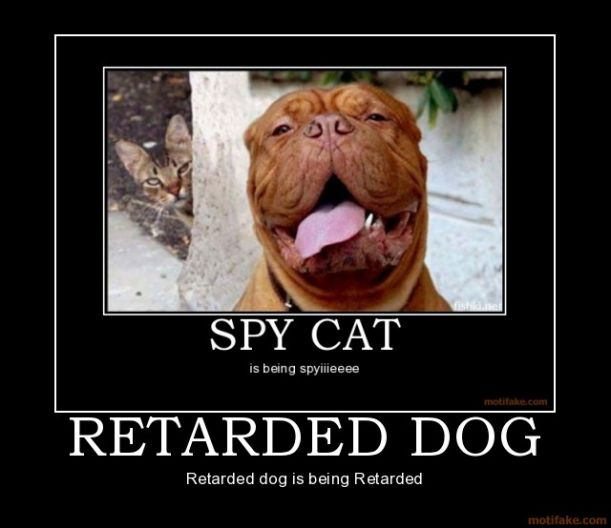 retarded-dog-dog-cat-spy-retarded-demotivational-poster-1217027003