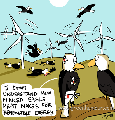 bald eagles and wind turbines copy copy