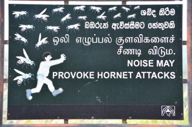 1. Sri Lanka, Sigirya