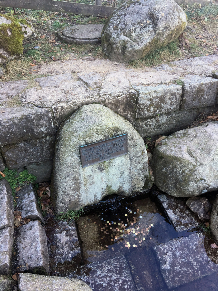Pramen Dunaje. Povšimněte si betonové skruže schované za kamenem.
