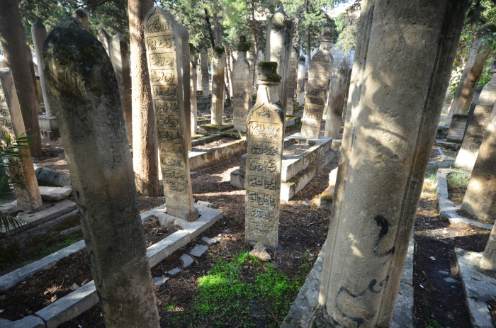 Lesy kamenných náhrobků v Istanbulu