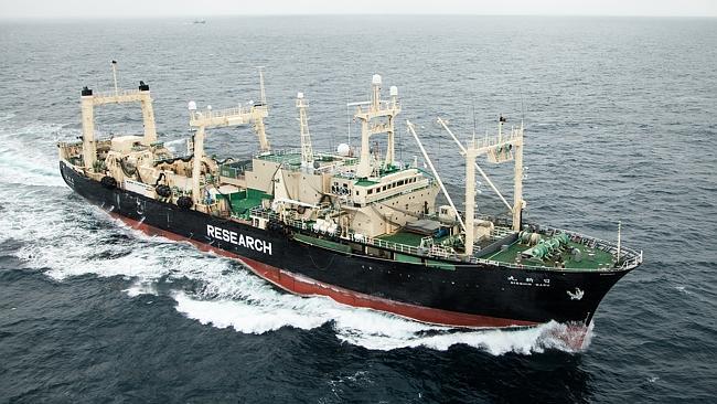 Japonská velrybářská loď Nisshin Maru – plovoucí jatka