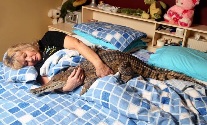 Australská majitelka s údajně jediným zcela ochočeným krokodýlem na světě