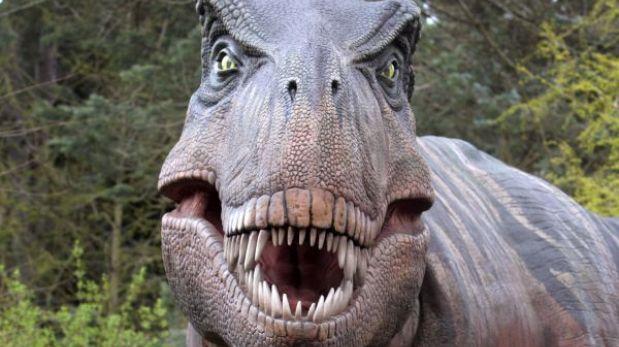 Byl první dinosaurus, nebo vejce?