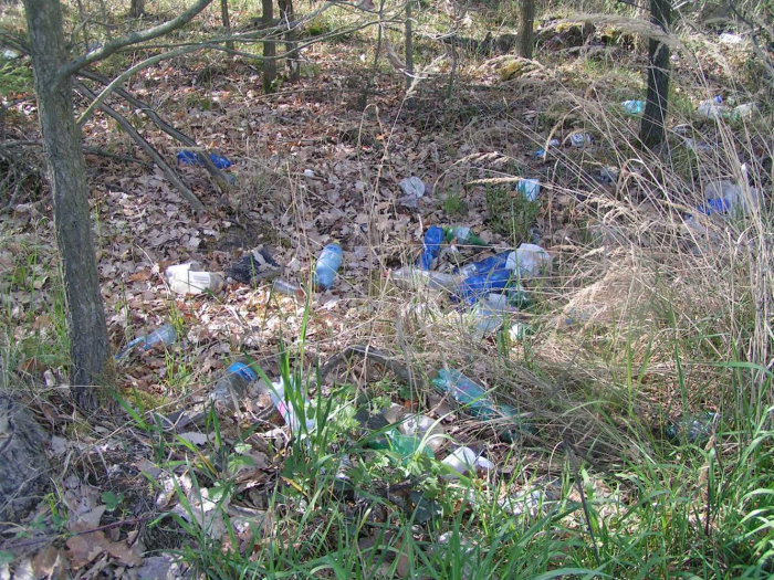 Přes tento les asi někdo utíkal z hospody, a proto se na něj nelze vůbec zlobit.