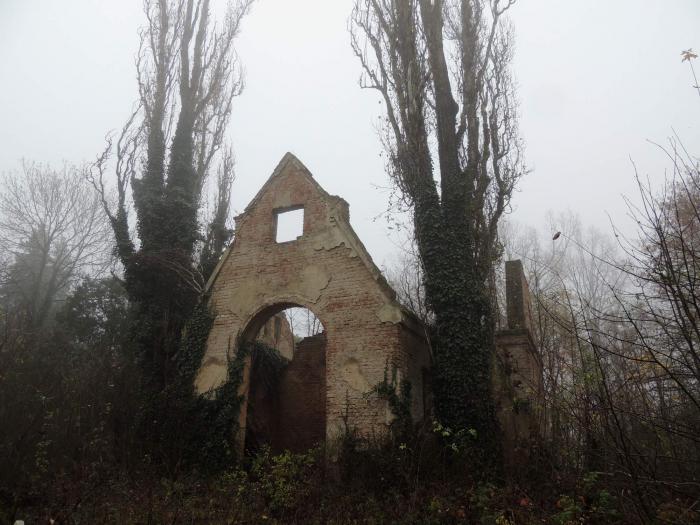 Celý hřbitov podléhá zkáze