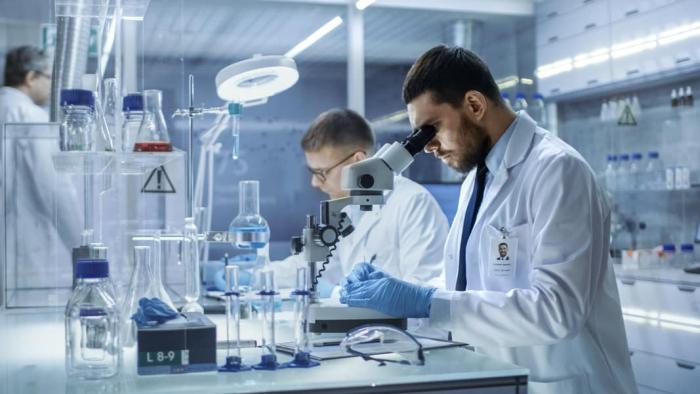 Vědci zkoumali léto mikroskopem