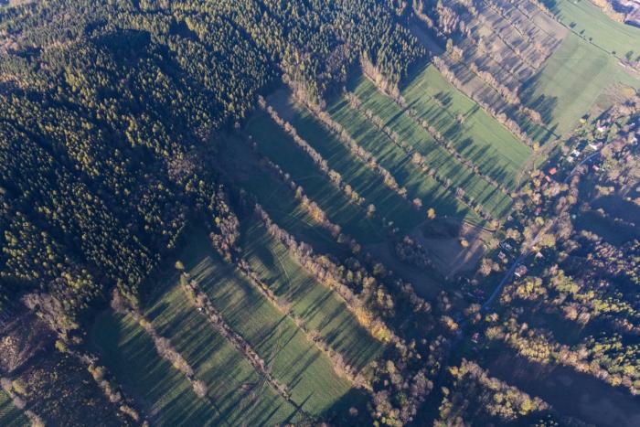 Nádherný příklad krajiny, kde se zvěř může dobře ukrýt a beze strachu přecházet mezi většími lesními celky.