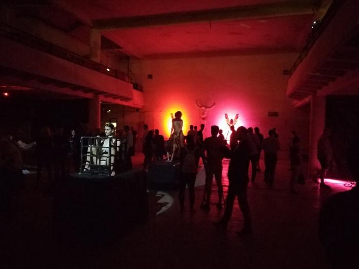 V prostorách výstavy je možné si prohlédnout vždy 13 nahých žen a dívek. Ty se během tří dnů, po které výstava Voayer trvá třikrát obmění.