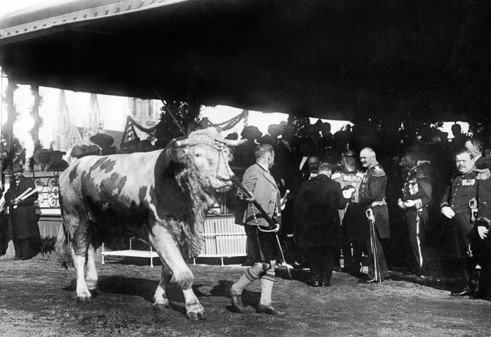 Nejen slavnost piva, ale zemědělství jako takového – 1910