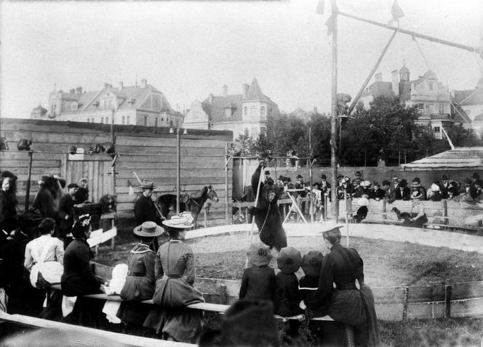 """Oblíbenou atrakcí býval živý """"tančící medvěd"""" – tenhle zde vystupoval v roce 1902"""