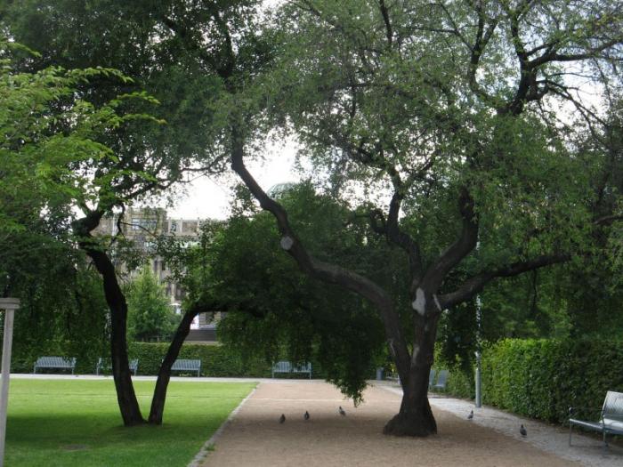 Park s hřištěm na fotbálek či basket