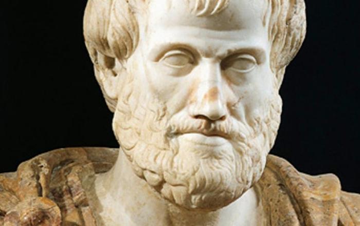 Aristoteles byl jedním z prvních lidí, kteří veřejně prosazovali omezování zbraní. Dnes to místo něj musí dělat EU.