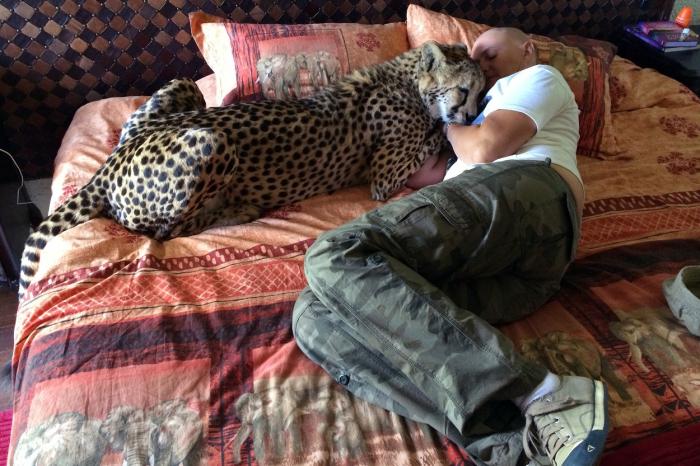 Gepardice Fiela pomohla své majitelce Rianě překonat chemoterapii po dvojité mastektomii
