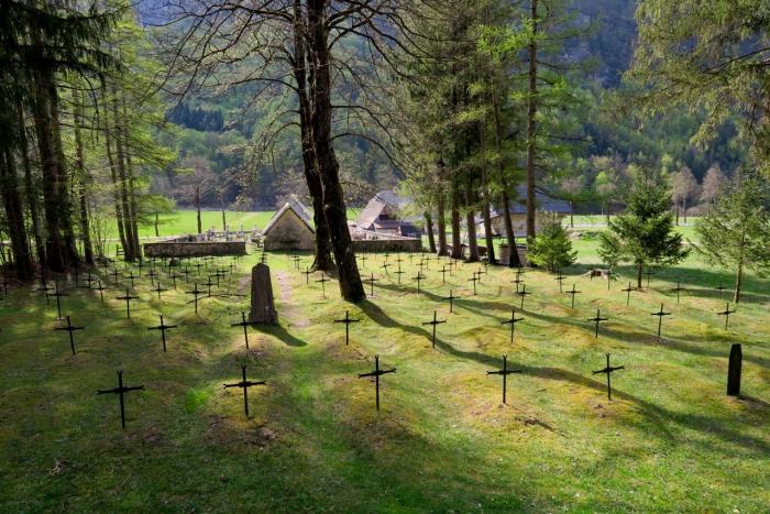 Tuší vůbec novinář Pacner, kolik Čechů zahynulo za první světové války?