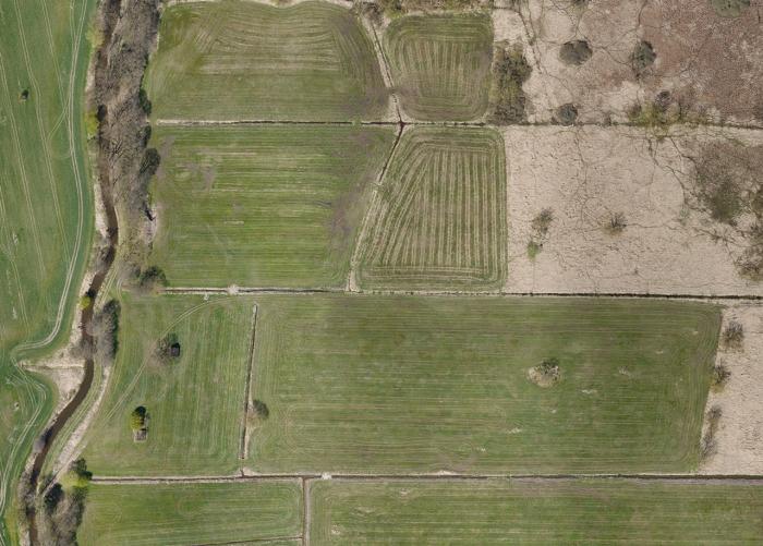 Pastviny mezi Zlatou stokou a Prostřední stokou jižně od rybníka Rožmberk