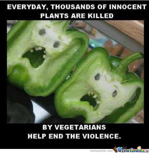 Každý den zemřou tisíce nevinných rostlin kvůli vegetariánům. Pomoz zastavit násilí!