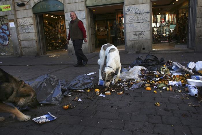 Ve španělském Madridu lze jíst doslova ze země. Tato metropole patří v žebříčku nejčistějších měst v Evropě do první pětky. Od konce.