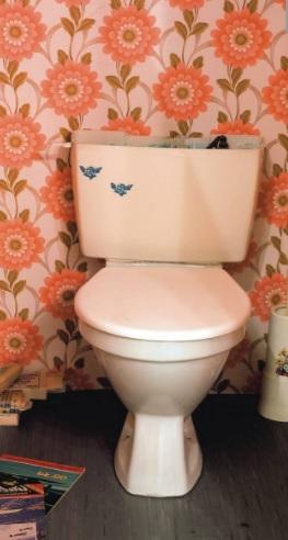 Kim Čong-un si na setkání také přivezl vlastní záchod. Je o něm známo, že nepoužívá veřejné toalety. Proč?