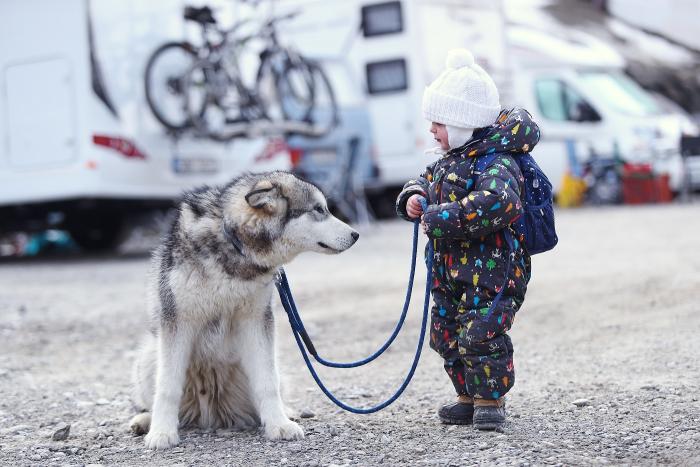 Starého psa novým kouskům nenaučíš, mladou lidskou bytost ano.