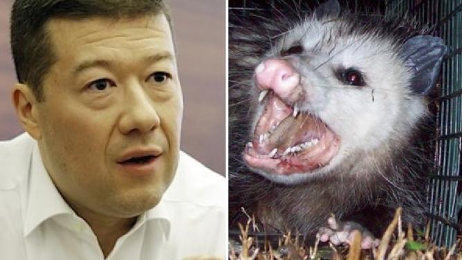 Okamura terčem žertu: kvůli internetovým vtipálkům mu volají, zda nenašel vzteklouvačici