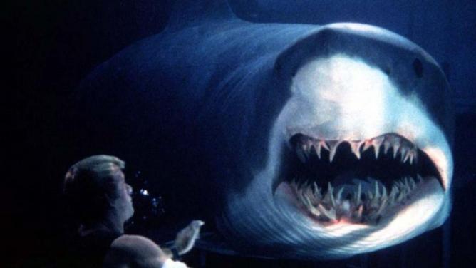 8důvodů, proč se umoře pořád bojíme žraloků