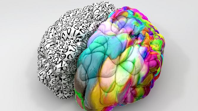 Levá vs. pravá hemisféra: že máte jednu dominantní, je jenmýtus