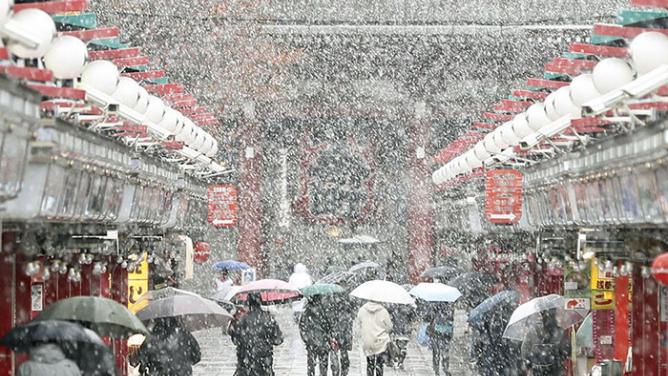 Japonsko umí překvapit: nejen hi-tech aparáty nebo čokoládovésushi