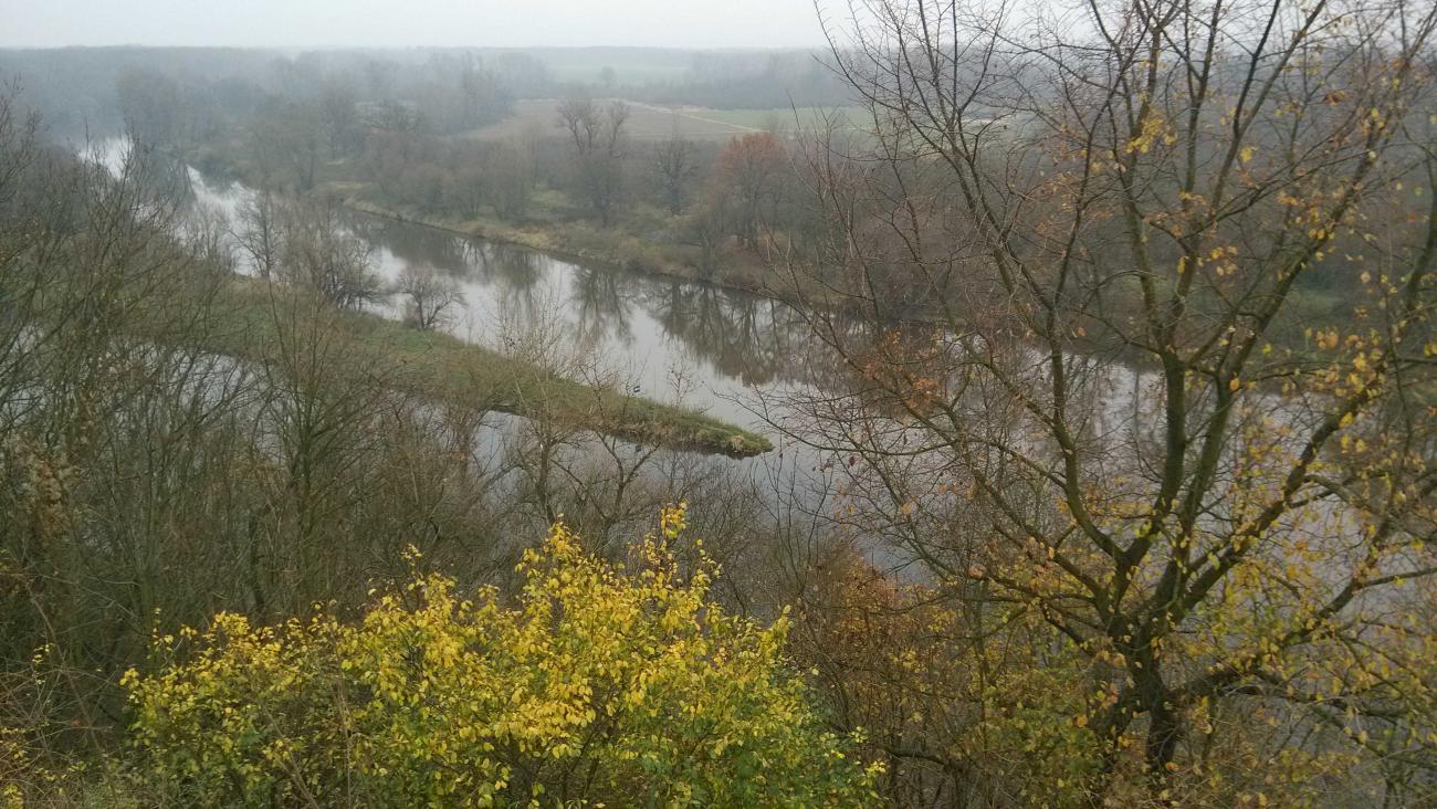 Do Labe v Mělníce vtéká Hořínský kanál. Vltava již do něj vtekla o pár set metrů proti proudu.