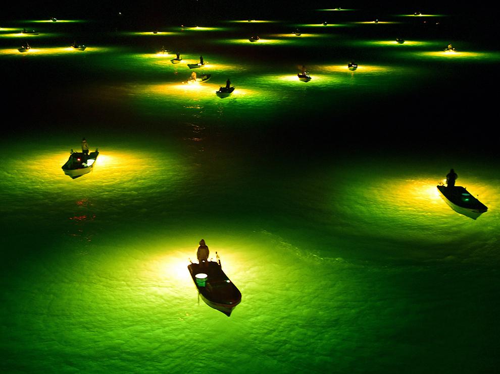 """""""Rybáři na japonské řece Yoshino čekají na úhoře, které přiláká jasné světlo. Tenhle způsob rybolovu se nejlépe provádí za temné noci. Jakmile se úhoř přiblíží, rybáři je zachytí do sítí."""""""