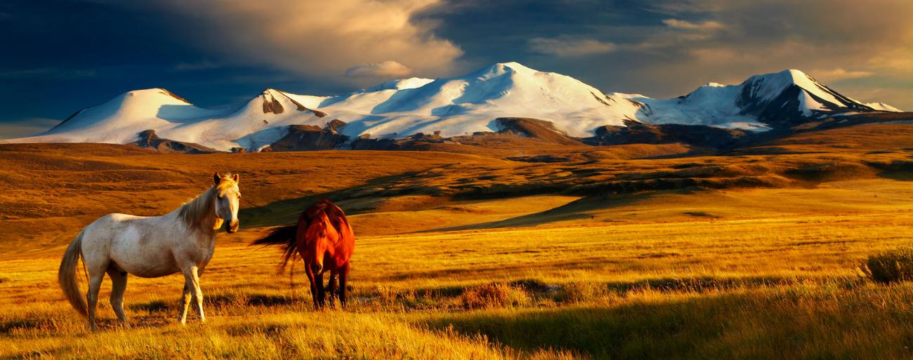Mongolské pláně – tady zemní plyn nepotřebují