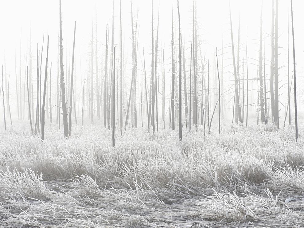 """""""Takhle mráz jednoho lednového rána 'zbarvil' okolí yellowstonského gejzíru."""""""