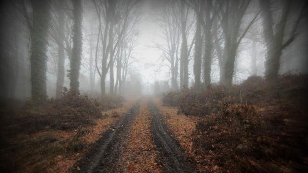V podzimní mlze se schovávají brány opuštěného hřbitova bláznů