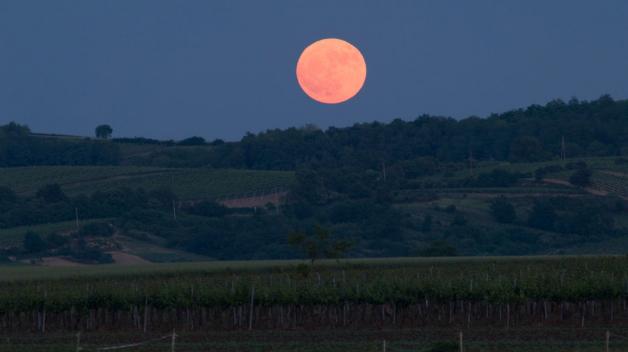 Měsíc v úplňku nad moravskými vinicemi. Takhle nějak to bude 25. prosince vypadat – Slunce zapadne kolem čtvrté a o půl hodiny později vyjde Měsíc