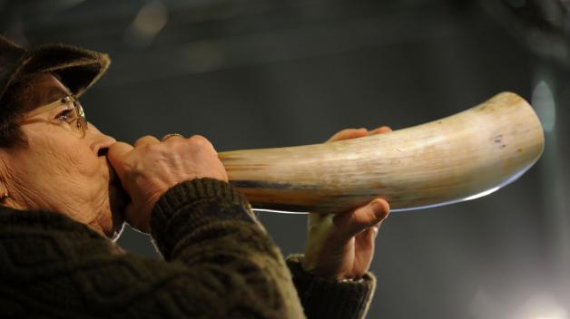 I starší laň může napodobit hlas mladého jelena.