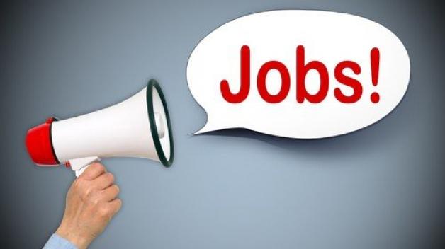 Míra nezaměstnanosti v ČR je na novém historickém minimu, v listopadu klesla na 2,5 %. U mužů se snížila na 2,0 %, u žen na 3,0 %.