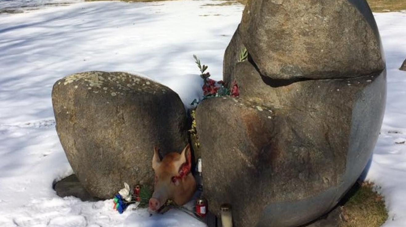 K památníku v Letech u Písku někdo o víkendu hodil prasečí hlavu. Velice vkusné, skutečně.