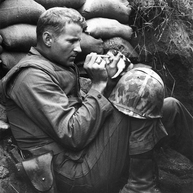 Seržant Frank Praytor se ujal opuštěného kotěte, jehož matka zemřela během druhé světové války.