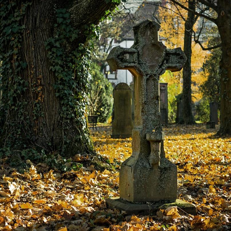 První manžel Kataríny zemřel na souchotiny.