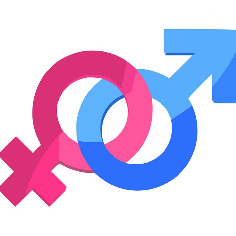3.Genderová studia