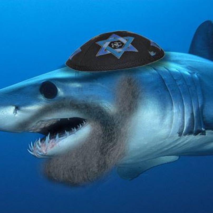 Židovský žralok zabiják, jehož útoky nejsou vůbec košer.