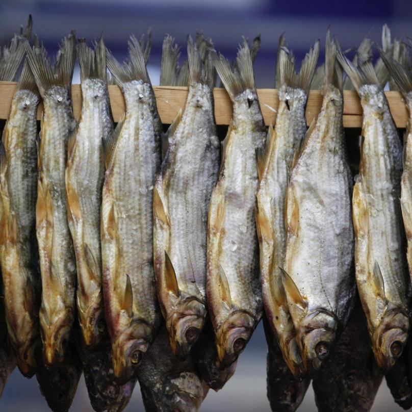 Kde jsou sušené ryby, musí být i ty čerstvé, a samozřejmě taky kaviár