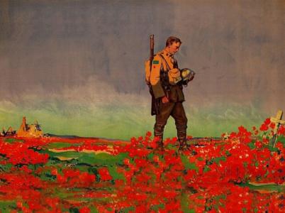 Červené máky jsou mezinárodním symbolem vzpomínky na válečné veterány.